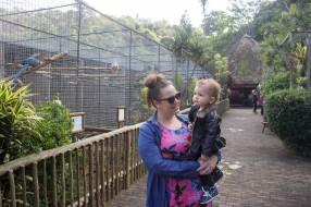 Bird Park 1