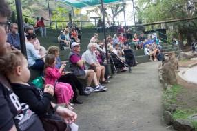 Bird Park 5